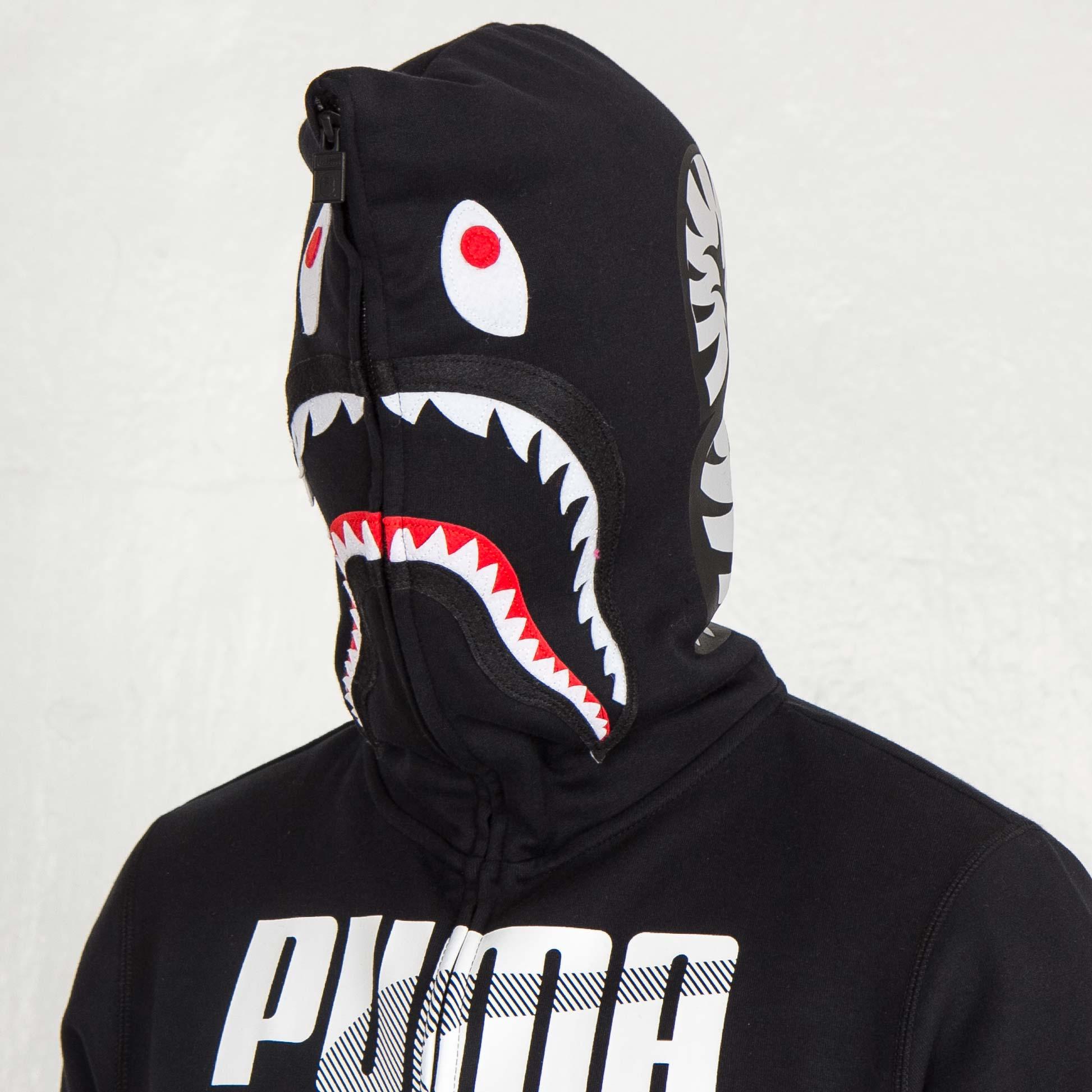 puma shark