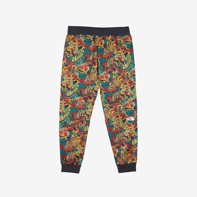 The North Face M Fine Pant - 2