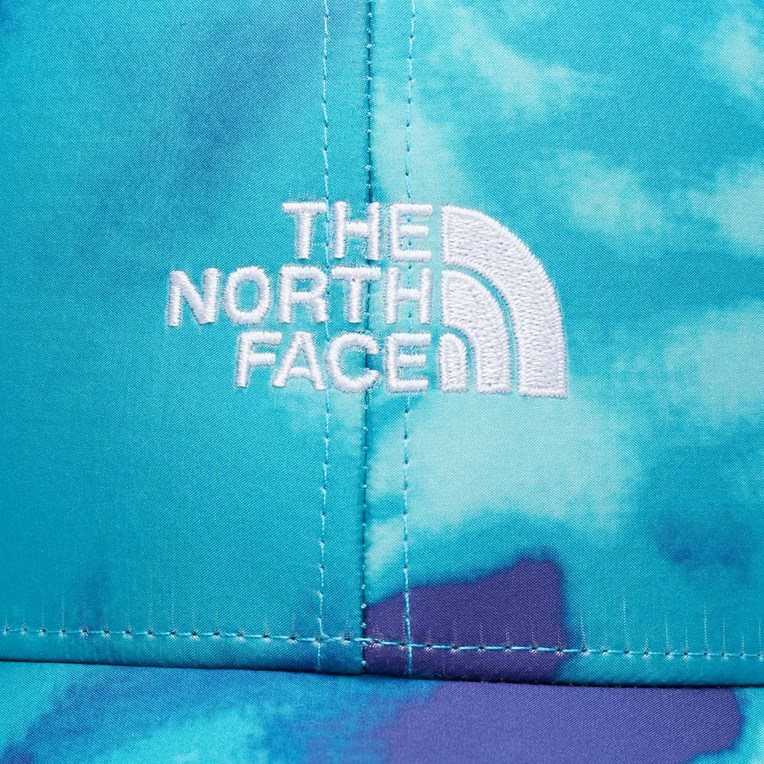 The North Face SNS Logo Hat - 5