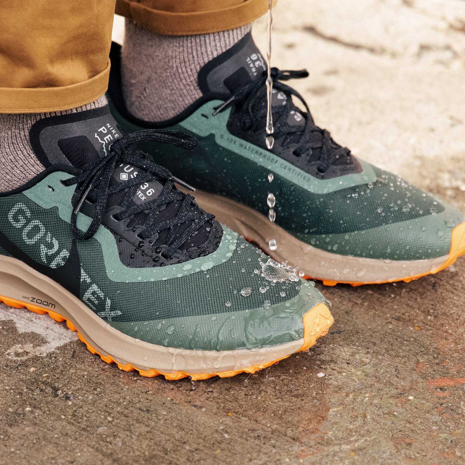 nike pegasus 36 trail gtx