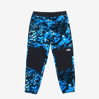 The North Face M Denali Pant